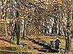 Najnowsze filmy wideo - Wraca jesień, telewizja nasz Racibórz
