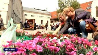 Najnowsze filmy wideo - Eksplozja wiosny na zamku, telewizja nasz Racibórz