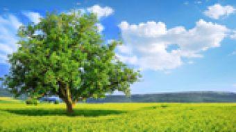 Najnowsze filmy wideo - Ekologia VII/2015, telewizja nasz Racibórz