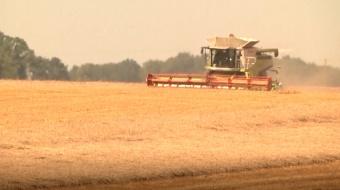 Najnowsze filmy wideo - Brak wody utrapieniem dla rolników, telewizja nasz Racibórz