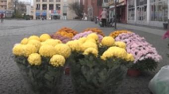 Najnowsze filmy wideo - Pomoc dla handlarzy kwiatów, telewizja nasz Racibórz