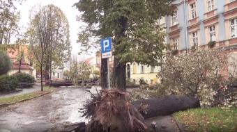Najnowsze filmy wideo - Huragan Grzegorz w Raciborzu, telewizja nasz Racibórz