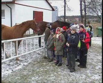 Najnowsze filmy wideo - ITAKA w stadninie koni, telewizja nasz Racibórz